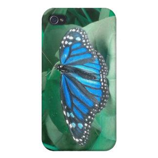 Caja azul del iPhone 4 de la mariposa de monarca iPhone 4 Protectores