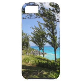 Caja azul del iPhone 5 de Bermudas iPhone 5 Funda