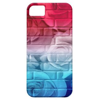 Caja Azul-iPhone blanca 5/5s de los rosas 11-Red iPhone 5 Carcasa