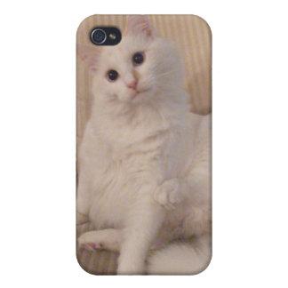 caja blanca curiosa del iphone del gatito iPhone 4/4S funda