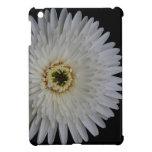 Caja blanca de la flor del Gerbera iPad Mini Funda