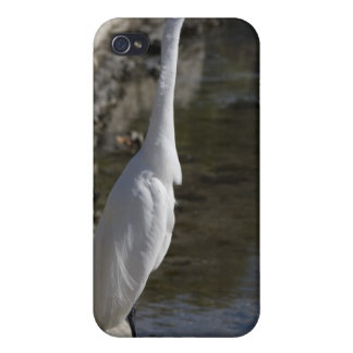 Caja blanca de la mota del iPhone 4 del pájaro de  iPhone 4/4S Funda
