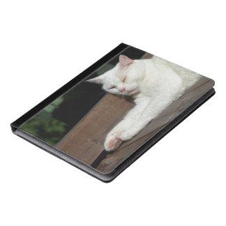 Caja blanca del gato el dormir