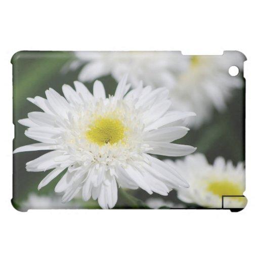 Caja blanca del iPad de las momias
