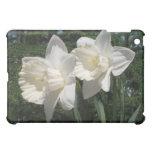 Caja blanca del iPad de los narcisos