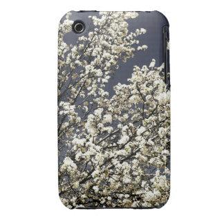 Caja blanca del iPhone 3 de las flores de cerezo iPhone 3 Funda