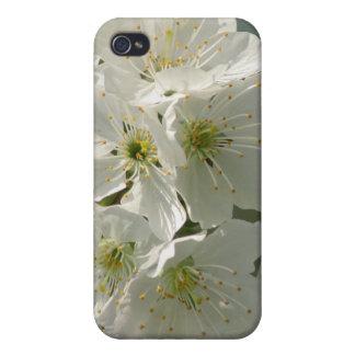 Caja blanca del iPhone 4 de las flores de cerezo iPhone 4 Funda