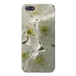 Caja blanca del iPhone 4 de las flores de cerezo iPhone 5 Carcasas