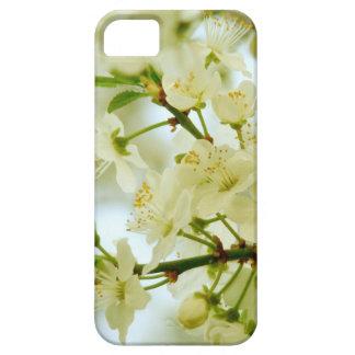 Caja blanca del iPhone 5 de la foto del árbol del  iPhone 5 Case-Mate Protector
