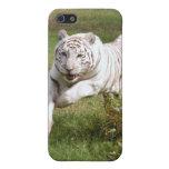 Caja blanca del iPhone del tigre iPhone 5 Cárcasas