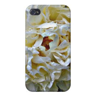 Caja blanca del Peony iPhone 4 Fundas
