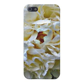 Caja blanca del Peony iPhone 5 Carcasa