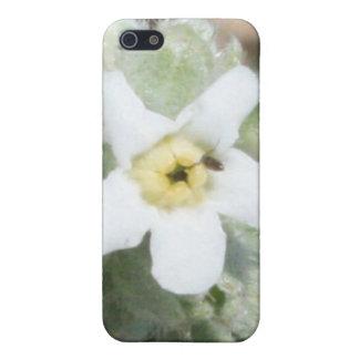Caja blanca minúscula de la mota del iPhone 4/4s iPhone 5 Funda