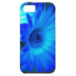 Caja brillante del iPhone 5 de la margarita azul iPhone 5 Case-Mate Coberturas