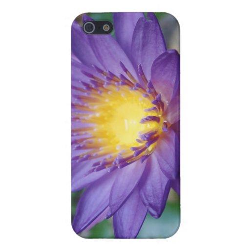 Caja brillante púrpura del iPhone 5/5S del final iPhone 5 Carcasa