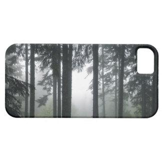 Caja brumosa del teléfono del paisaje de la funda para iPhone SE/5/5s