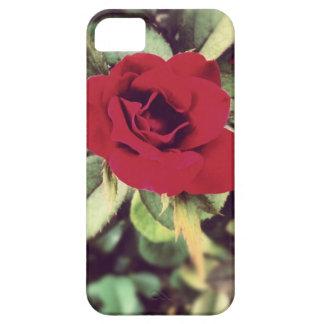 Caja color de rosa 2 de IPhone iPhone 5 Case-Mate Fundas