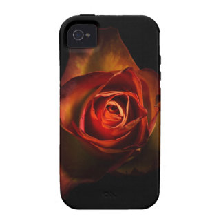 Caja color de rosa anaranjada de Iphone Vibe iPhone 4 Carcasas