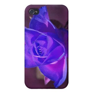Caja color de rosa de color morado oscuro del iPho iPhone 4 Fundas