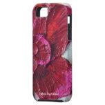 Caja color de rosa de color rojo oscuro del iPhone iPhone 5 Fundas
