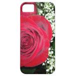 Caja color de rosa de Iphone iPhone 5 Protector