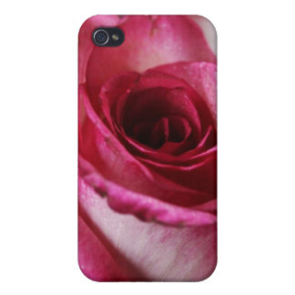 Caja color de rosa de la mota del iPhone 4 4S iPhone 4/4S Fundas