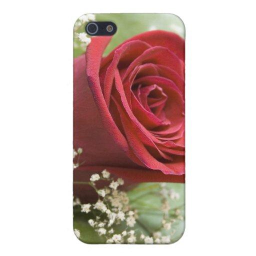 caja color de rosa de la mota iPhone 5 fundas