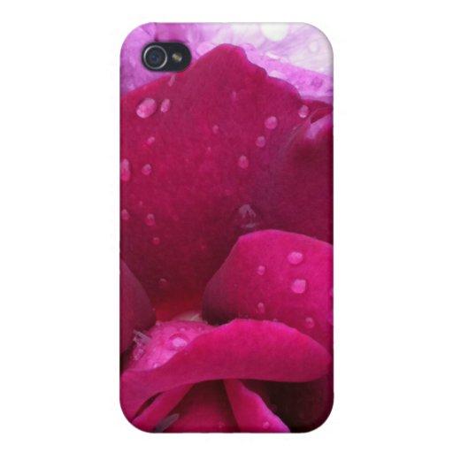 Caja color de rosa púrpura del iPhone 4 iPhone 4/4S Funda