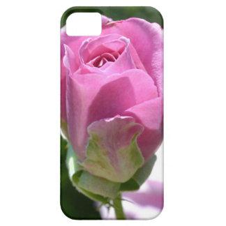 Caja color de rosa romántica del iPhone del brote iPhone 5 Carcasas