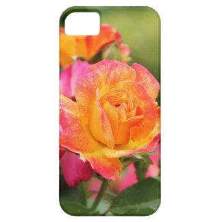 Caja color de rosa rosada amarilla del iPhone 5 iPhone 5 Carcasas