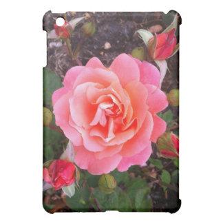 Caja color de rosa rosada del iPad