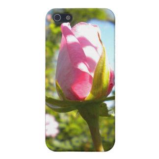 Caja color de rosa rosada del iPhone 4 del brote iPhone 5 Coberturas