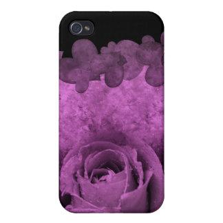 Caja color de rosa y de los corazones púrpura del  iPhone 4 protectores