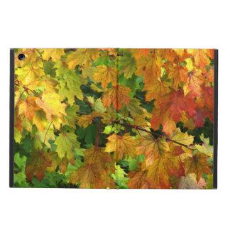 Caja colorida del iPad del follaje de otoño