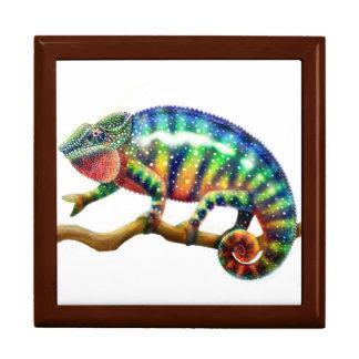 Caja colorida del lagarto del camaleón de la joyero cuadrado grande