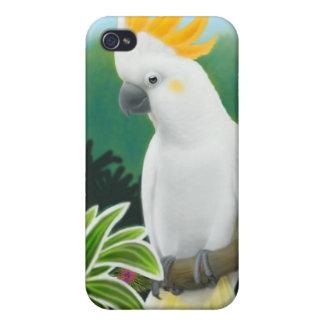 Caja con cresta cítrica de la mota del Cockatoo iPhone 4/4S Carcasa