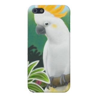 Caja con cresta cítrica de la mota del Cockatoo iPhone 5 Funda