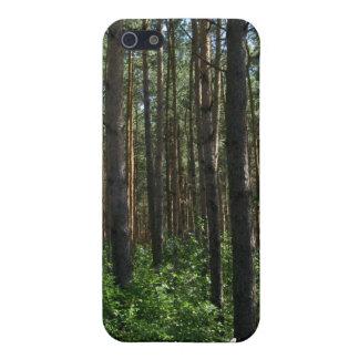 Caja conífera verde del iPhone 4 de los pinos del  iPhone 5 Cárcasas