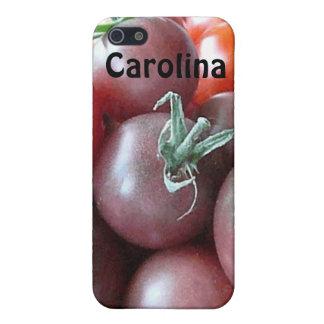 Caja conocida de encargo fresca de la piel de la c iPhone 5 coberturas