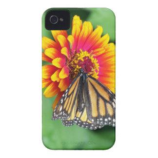 Caja de alimentación de Blackberry de la mariposa Funda Para iPhone 4 De Case-Mate