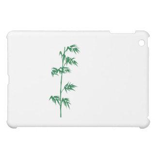 Caja de bambú verde del ipad