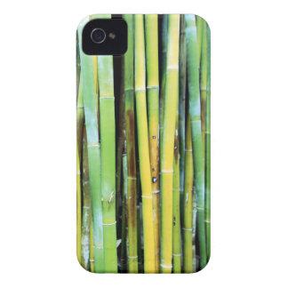 Caja de bambú verde del iPhone 4 Case-Mate iPhone 4 Cobertura