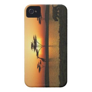 Caja de Blackberry de la puesta del sol de la Carcasa Para iPhone 4