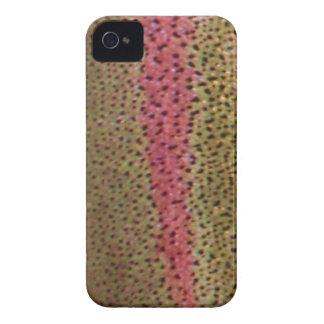 Caja de Blackberry de la trucha arco iris