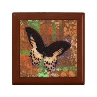 Caja de dios de la mariposa caja de recuerdo