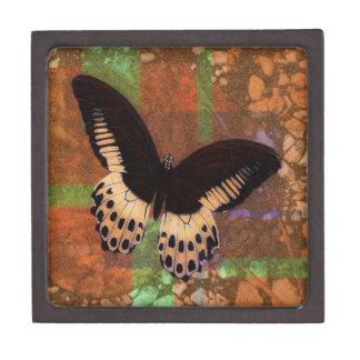 Caja de dios de la mariposa caja de regalo de calidad