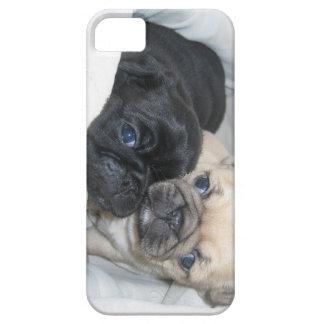 Caja de dos barros amasados iPhone 5 Case-Mate cobertura