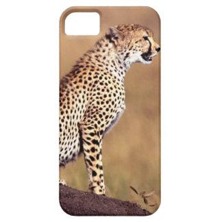 Caja de encargo de la casamata del guepardo de funda para iPhone SE/5/5s