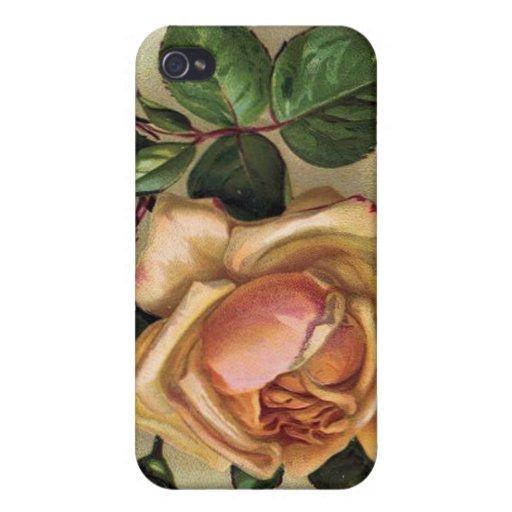 Caja de encargo de la mota del iPhone de los rosas iPhone 4/4S Fundas