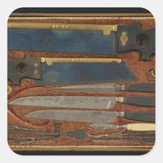 Caja de instrumentos anatómicos pegatinas cuadradases